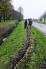 Bollen poten langs de Venneweg
