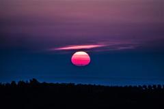 Sunshine - Alba (Angelo Petrozza) Tags: sunshine alba montescaglioso sun sole angelopetrozza basilicata cielo sky nuvole clouds rosa pink foschia fog