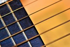 #MacroMonday (snappyslug) Tags: guitar macro monday nikon instruments strings sigma closeup