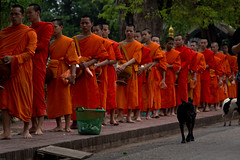 2017_04_27LuangPrabangMönche21 (Andi [アンデイ]) Tags: laos travel travelphotography street streetphotography seasia southeastasia lao newyear savhannaket vientiane vangvieng luangprabang canon sigma sigmaa nature village rural buddhism
