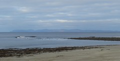 Orkney Islands from Thurso Beach, Thurso, Caithness, Oct 2017 (allanmaciver) Tags: orkney islands thurso beach sand sea shore water seaweed outline clouds grey low cloud caithness scotland sutherland north coast allanmaciver