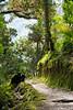 Costa-Rica-6209.jpg (ingmar_) Tags: costarica gezin landschap natuur vakantie zomervakantie