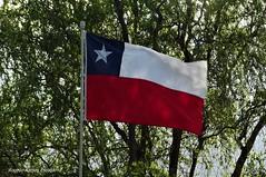 Bandera (Rogelio Rolando Miguel) Tags: bandera chilena arboles