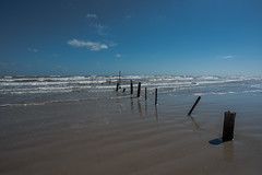 Beach - Mustang Island State Park - Nueces County - Texas - 25 February 2017 (goatlockerguns) Tags: beach mustang island state park nueces county texas seagulls padreisland nature natural usa unitedstatesofamerica south southern gulfofmexico coast coastal