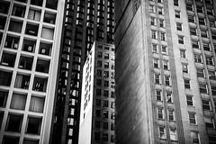 Downtown guardians [Explored] (_Franck Michel_) Tags: building urban deep dark contrast blackandwhite bw black white window office light glass steel concrete