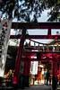 O-Inari-San (Yorkey&Rin) Tags: 2017 9月 autumn bluesky em5markii gifu inari japan lumixg20f17 people rin september shrine town ub250029 お稲荷さん 観光客 岐阜県 秋 千代保稲荷神社