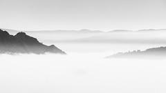 Foggy Day in the Valley (DavidFrutos) Tags: davidfrutosegea albacete yeste canondslr 5dmarkii canon70200mm minimalismo minimal minimalism minimalist 169 nature naturaleza landscape valley valle atmosphere ambiance fineart paisaje nubes clouds fog foggy niebla monochrome blancoynegro bn bw greyscale silverefexpro