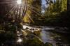 Automne au bord de l'eau (Manonlemagnion) Tags: nature rivière forêt sousbois poselongue flare mousse roche nikond7000 105mm28 nd400