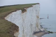 IMG_2756 (The Intrepid Traveler) Tags: england united kingdom jurassiccoast southerncoast uk unitedkingdom canon5dmkii sevensisters birlinggap beachyhead