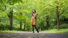 Felt autumn (ai3310X) Tags: carlzeiss ycontax planar t 1450 nissin di700a 銀杏並木 銀杏 イチョウ 昭和記念公園 portraits ポートレート