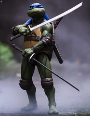 Leonardo - Teenage Mutant Ninja Turtle (jezbags) Tags: toys toy neca turtle tmnt turtles teenage mutant ninja macro macrophotography macrodreams canon60d canon 60d 100mm closeup upclose leonardo blue smoke atmosphere swords