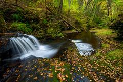 Hornbeck's Creek Falls (jeanineleech) Tags: hornbeckscreek waterfall waterfalls swirls swirl creek stream autumn fall gorge woods forest pennsylvania