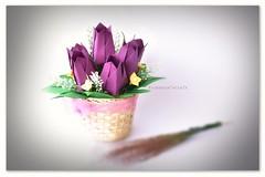 Origami Tulip Designer #TomokoFuse (Zusanna Woe) Tags: tomokofuse