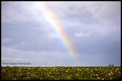 rainbow (Raf Degeest Photography) Tags: brusselsairport zaventem steenokkerzeel l25 planes