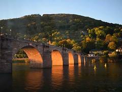 Old Bridge (anitareal) Tags: alemaniaheidelbergcontinente puente viejo rio árboles cielo foto paisaje postal viaje turismo atardecerluz sombras reflejos agua airelibre anamariarealnikon