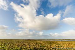 Peasens moddergat (Chantal van Breugel) Tags: herfst landschap zee noordoostfriesland peasens moddergat cursuslandschapsfotografie oktober 2017 canon5dmark111 canon1635