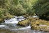 IMG_2319 (stuleeds) Tags: eastlynriver nationaltrust river watersmeet woodland