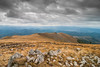 Pancicev vrh (Djordje Petrovic) Tags: kopaonik pancicevvrh sky clouds serbia srbija nikond80 nikon tokina1224mm nature mountain planina