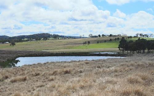 630 Bryans Gap Road, Tenterfield NSW 2372
