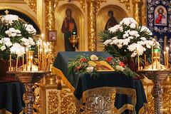 Преподобного Сергия (42)
