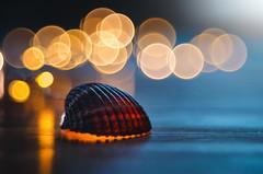 Home (Pásztor András) Tags: shell sea ocean home llight bokeh bubble dof manual lens meyergorlitz diaplan 80mm f28 nature dslr nikon d5100 hungary andras pasztor photography 2017