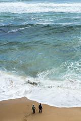 P1015284 (chrisling1202) Tags: olympus omd em5 mark ii 2 great ocean road 12 1240mm f28