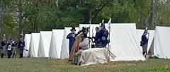 Meanwhile back at headquarters (jcdriftwood) Tags: mississinewa1812 reenactment reenactors headquarters camp encampment soldiers 1812 warof1812