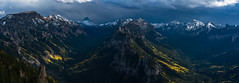 Big Blue Wilderness (Matt Payne Photography) Tags: 14er aspentrees autumn bigbluewilderness cliffs colorado coxcombpeak dunsinanemountain eastforkcimarronriver fall fallcolors landscape middleforkcimarronriver mountains panorama panoramic precipicepeak redcliff sanjuanmountains sonya7r2 sonyfe70300 storms uncompahgrepeak