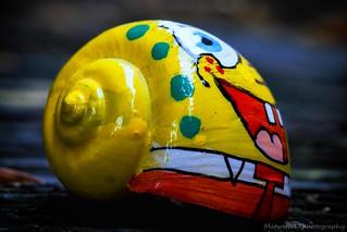 Sponge Bob Spiral pants IMG_7276-1