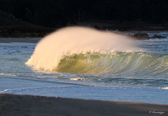 The Honey Hole (Omnitrigger) Tags: barrel seaside offshore tube swell