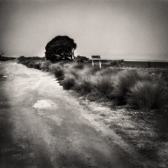 Avalon Beach (Anjella Roessler) Tags: avalonbeach film pinhole kiev60 arista filmphotography beach geelong australia arista100 sovietcamera