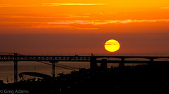 Golden Gradient (Greg Adams Photography) Tags: lisbon lisboa portugal sunset sun bridge travel europe 2016 fall hhsc2000 silhouettes silhouette shadow gold gradiant dusk