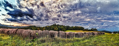 IMG_5044-47Ptzl1TBbLGERsc2 (ultravivid imaging) Tags: ultravividimaging ultra vivid imaging ultravivid colorful canon canon5dmk2 clouds fields farm evening autumn autumncolors trees pennsylvania pa panoramic landscape sky scenic vista rural rainyday balesofhay