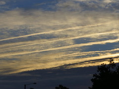 Clouds And Contrails. (dccradio) Tags: lumberton nc northcarolina robesoncounty outdoors outside nature natural morning goodmorning nikon coolpix l340 bridgecamera sky clouds contrail morningsky interesting bluesky sunlight sunrise tree trees foliage