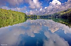 Spiegelung am See (garzer06) Tags: see wolken blau weis wasser landschaftsbild spiegelung grün baum landschaftsfoto naturephoto naturfotografie mecklenburgvorpommern naturfoto naturephotography vorpommernrügen inselrügen vorpommern insel landscapephotography rügen landschaftsfotografie