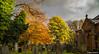 St Anns Church (Steve Samosa Photography) Tags: church stannschurch autumntrees autumn rainhill sthelens england unitedkingdom gb