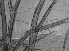 SERUSIER Paul - Le Verger (Louvre RF40965-Recto) - Detail 12 (L'art au présent) Tags: details détail détails detalles drawings dessins croquis étude study studies sketch sketches dessins19e 19thcenturydrawings dessinfrançais frenchdrawings peintresfrançais frenchpainters louvre paris france musée museum arbres tree trees trunk orchard grove nature