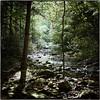 Laurel Falls stream (Steve4343) Tags: nikon d70s laurel falls laurelfalls stream river creek trees mountains appalachian trail steve4343