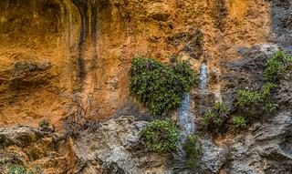 Crete / Κρήτη / Kreta: Agia Irini Gorge