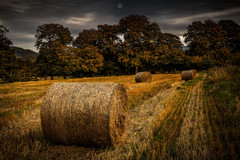 The Final Straw (Augmented Reality Images (Getty Contributor)) Tags: autumn perthshire landscape strawbales countryside scotland leefilters fields bales trees canon harvest clouds field bridgeofearn unitedkingdom gb
