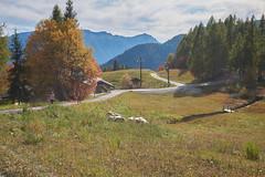 DSC01906 (cassolclaudio) Tags: mountain panarotta trento mountainbike bike