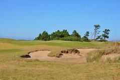 39 (bigeagl29) Tags: pacific dunes golf course bandon resort oregon or coastline beach landscape scenic scenery
