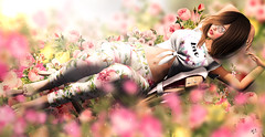 Floral dream (meriluu17) Tags: foxcity ml monalisa floral flower flowers pastel pink pinky dream dreamy fantasy cute love