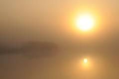 Nebliger Morgen an der Alten Treeneschleife in Süderhöft; Nordfriesland (17) (Chironius) Tags: süderhöft nordfriesland schleswigholstein deutschland germany allemagne alemania germania германия niemcy treene fluss river rivière rio поток fiume stream morgendämmerung sonnenaufgang morgengrauen утро morgen morning dawn sunrise matin aube mattina alba ochtend dageraad zonsopgang рассвет восходсолнца amanecer morgens dämmerung sky himmel ciel cielo hemel небо gökyüzü wasserspiegel spiegelung refleksion reflection réflexion riflessione отражение reflexión yansıma nebel fog brouillard niebla gegenlicht