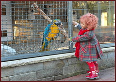 Sanrikes Besuch im Tierpark ...... (Kindergartenkinder) Tags: kindergartenkinder annette himstedt dolls sanrike grugapark essen gruga