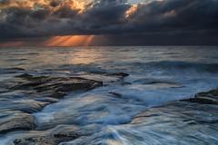 South Curl Curl Sunrise (RoosterMan64) Tags: australia landscape longexposure nsw northernbeaches rockshelf seascape southcurlcurl sunrise