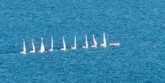 Ten boats in a row. (bkkay1) Tags: chicago sailboats lakemichigan