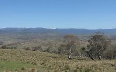 7597 Snowy River Way, Jindabyne NSW