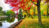 (DeZ - light painter) Tags: guelphcanada royalcitypark reflection water bridge fall autumn colour hdr nikon nikond610 nikkor nikkor1424mmf28 nature dez