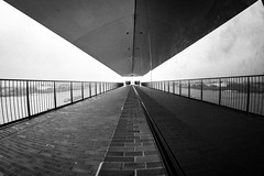 eyes on the prize / It is looking back at me (Özgür Gürgey) Tags: 12mm 2017 bw d750 elbe elbphilharmonie hafencity hamburg nikon samyang architecture bricks fisheye grainy people railings reflection symmetry